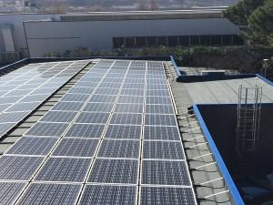 Moduli fotovoltaici solarworld - impianto fotovoltaico miglioramento efficienza energetica